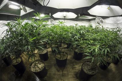 besitz marihuana strafe